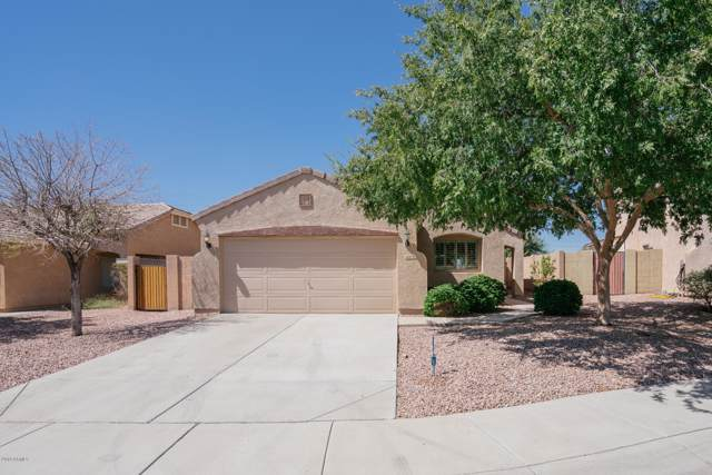 14676 N 162ND Lane, Surprise, AZ 85379 (MLS #5981295) :: Kortright Group - West USA Realty