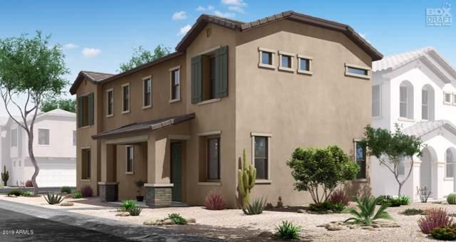 8210 E Inverness Avenue, Mesa, AZ 85209 (MLS #5981310) :: Arizona 1 Real Estate Team