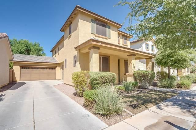 3552 E Carla Vista Drive, Gilbert, AZ 85295 (MLS #5981394) :: Santizo Realty Group