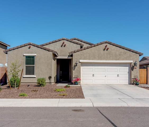 202 E Santori Drive, San Tan Valley, AZ 85140 (MLS #5981496) :: Revelation Real Estate