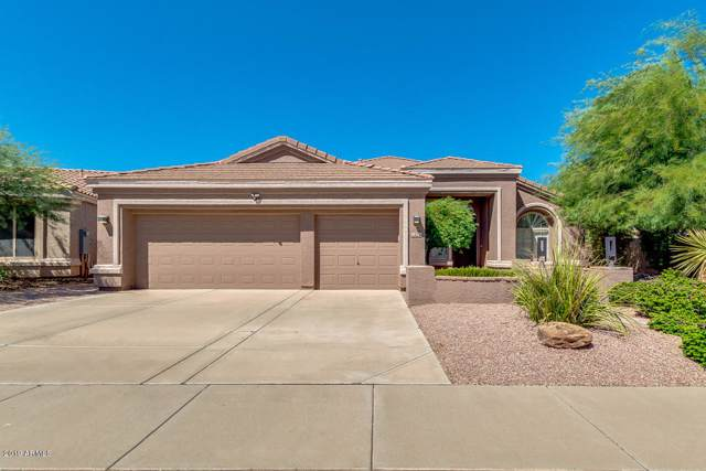 22410 N 46TH Place, Phoenix, AZ 85050 (MLS #5981511) :: Kortright Group - West USA Realty