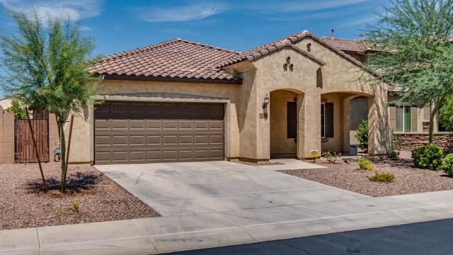 10852 E Thatcher Avenue, Mesa, AZ 85212 (MLS #5981545) :: The W Group