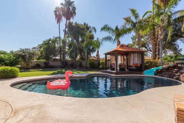 5429 E Terry Drive, Scottsdale, AZ 85254 (MLS #5981573) :: CC & Co. Real Estate Team