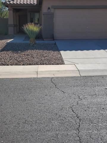 40737 N Territory Trail, Anthem, AZ 85086 (MLS #5981627) :: Scott Gaertner Group