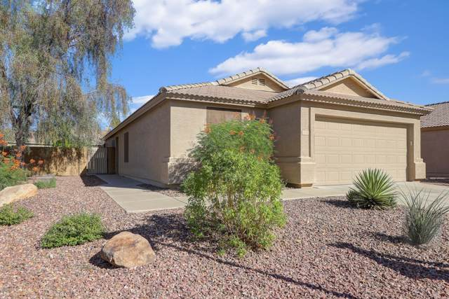 16821 N 114th Drive, Surprise, AZ 85378 (MLS #5981653) :: Brett Tanner Home Selling Team