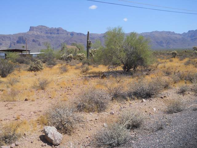 0 E 28th Avenue, Apache Junction, AZ 85119 (MLS #5981655) :: Lifestyle Partners Team