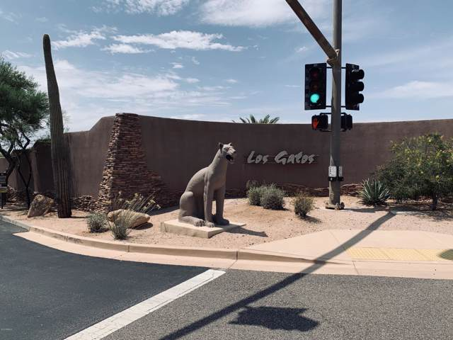 22411 N Los Caballos Drive, Scottsdale, AZ 85255 (MLS #5981831) :: Conway Real Estate