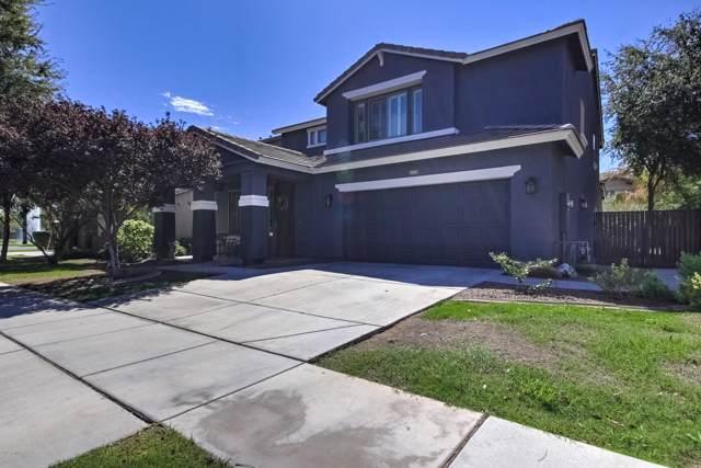 4141 E Cullumber Court, Gilbert, AZ 85234 (MLS #5981849) :: Santizo Realty Group