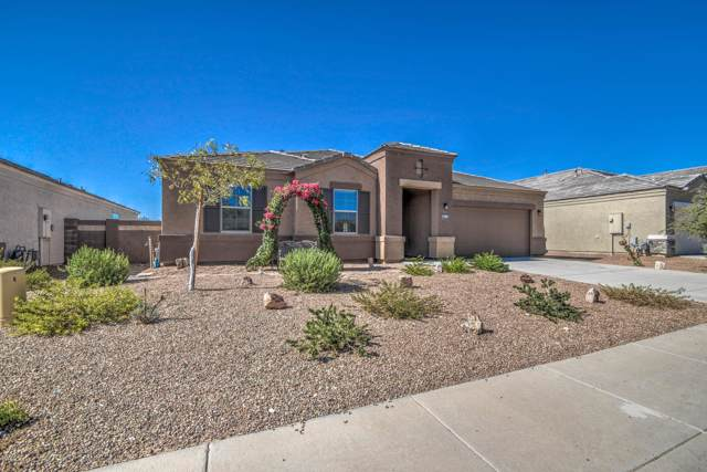 3902 N 303RD Court, Buckeye, AZ 85396 (MLS #5982058) :: Devor Real Estate Associates