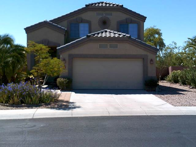 21784 W Renegade Street W, Buckeye, AZ 85326 (MLS #5982067) :: Devor Real Estate Associates