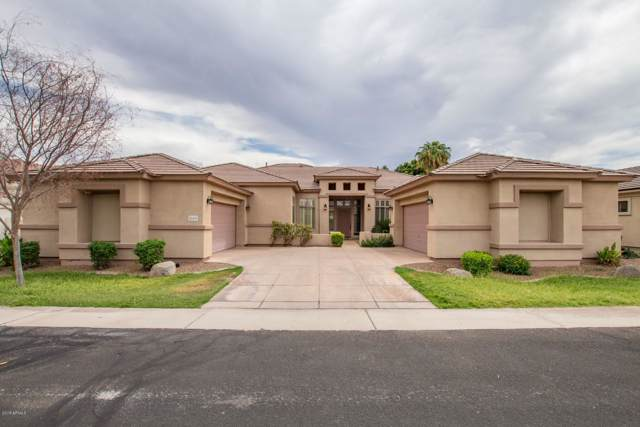 2163 W Musket Place, Chandler, AZ 85286 (MLS #5982154) :: The Everest Team at eXp Realty