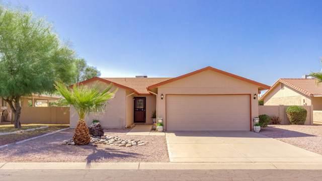 25240 S Pinewood Drive, Sun Lakes, AZ 85248 (MLS #5982212) :: Lifestyle Partners Team