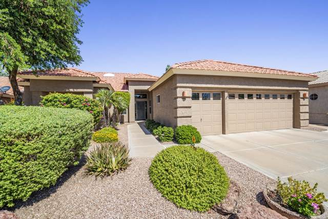 9522 E Hercules Drive, Sun Lakes, AZ 85248 (MLS #5982285) :: Lifestyle Partners Team