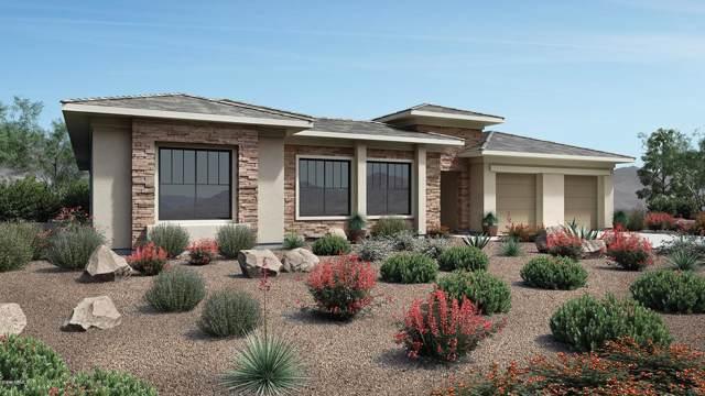 11711 W Dove Wing Way, Peoria, AZ 85383 (MLS #5982797) :: Howe Realty