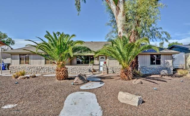 1712 E Grove Avenue, Mesa, AZ 85204 (MLS #5983065) :: The Kenny Klaus Team