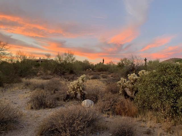 9910 E Foothills Drive, Scottsdale, AZ 85255 (MLS #5983200) :: Howe Realty