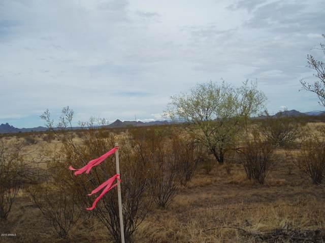 31510 W Dixileta Drive, Unincorporated County, AZ 85361 (MLS #5983309) :: The W Group