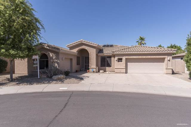 14686 W Wilshire Drive, Goodyear, AZ 85395 (MLS #5983320) :: Conway Real Estate