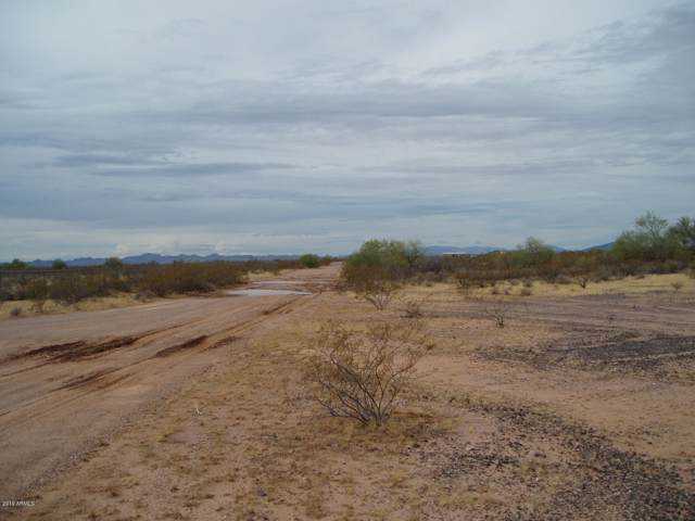 31110 W Dixileta Drive, Unincorporated County, AZ 85361 (MLS #5983386) :: Howe Realty