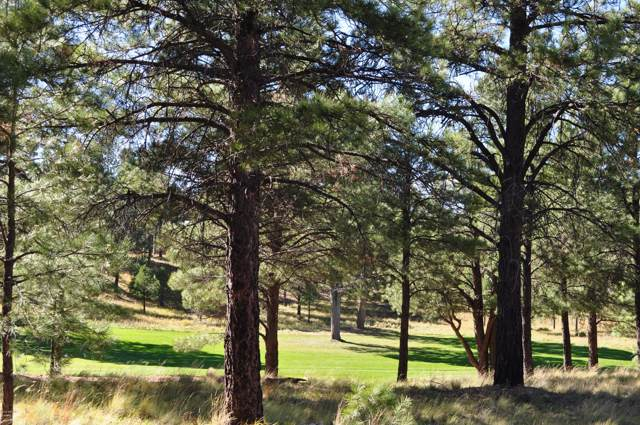 2931 S Solitaries Canyon Drive, Flagstaff, AZ 86005 (MLS #5983572) :: Conway Real Estate