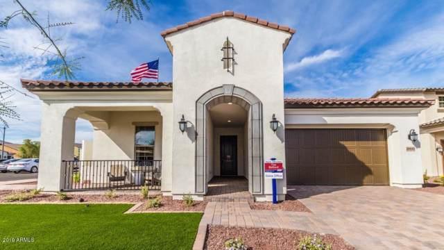 20440 W Legend Trail, Buckeye, AZ 85396 (MLS #5983602) :: The Property Partners at eXp Realty