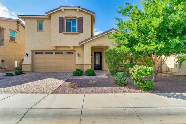 143 E Prescott Drive, Chandler, AZ 85249 (MLS #5984235) :: Relevate | Phoenix