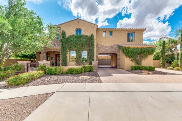 20293 E Camina Buena Vista, Queen Creek, AZ 85142 (MLS #5984243) :: Revelation Real Estate