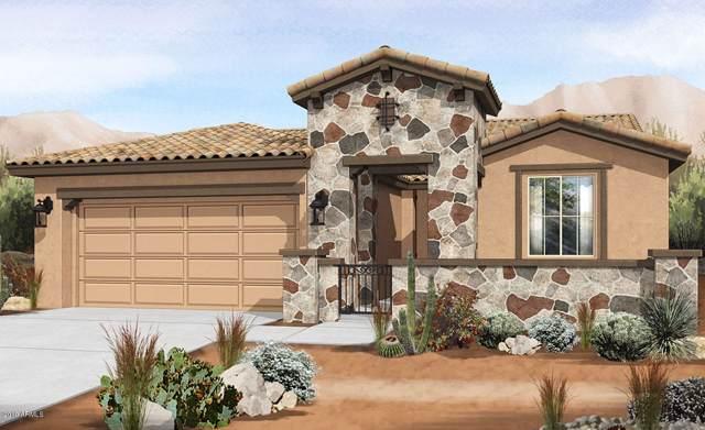 9744 E Torino Avenue, Mesa, AZ 85212 (MLS #5984315) :: Lucido Agency
