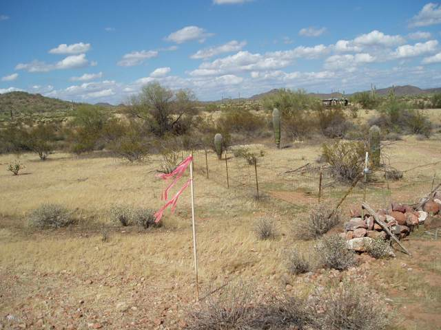 30502 W Carlise Road, Unincorporated County, AZ 85361 (MLS #5984890) :: Brett Tanner Home Selling Team