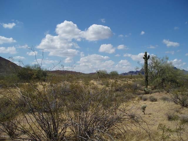 31002 W Delores Road, Unincorporated County, AZ 85361 (MLS #5984917) :: The W Group