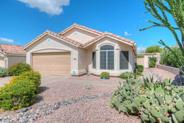 3826 N Lomond Circle, Mesa, AZ 85215 (MLS #5984999) :: Santizo Realty Group