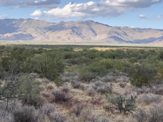 00 N Pecos Trail, Congress, AZ 85332 (MLS #5985005) :: The Kenny Klaus Team