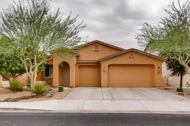 9203 W Bent Tree Drive, Peoria, AZ 85383 (MLS #5985424) :: Howe Realty
