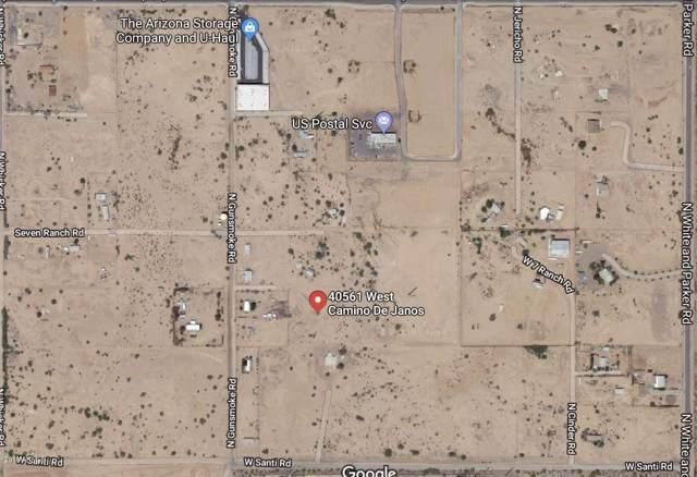 40561 W Camino De Janos, Maricopa, AZ 85138 (MLS #5985583) :: The W Group
