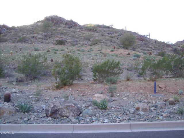 6900 N 39TH Place, Paradise Valley, AZ 85253 (MLS #5985779) :: Revelation Real Estate