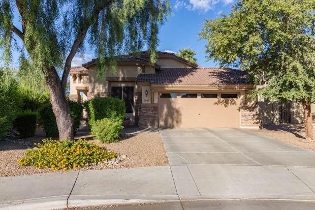 2940 S Miller Drive, Chandler, AZ 85286 (MLS #5985782) :: Revelation Real Estate