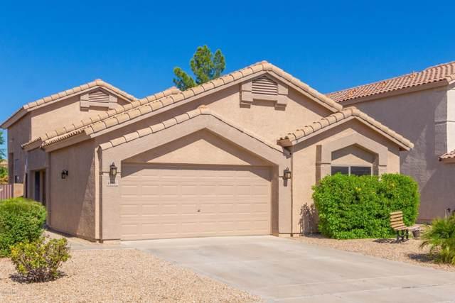14510 N 87TH Avenue, Peoria, AZ 85381 (MLS #5985962) :: The Laughton Team