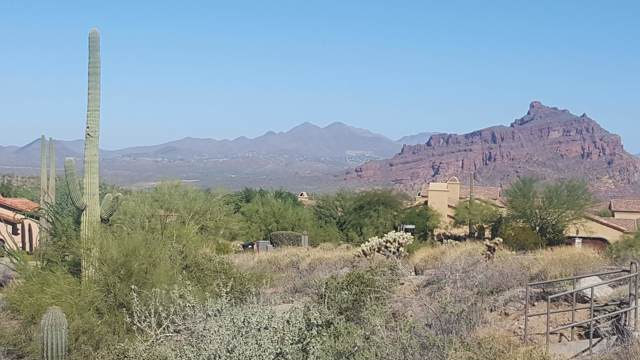 4244 N Via Cobre Circle, Mesa, AZ 85207 (MLS #5985999) :: The Everest Team at eXp Realty