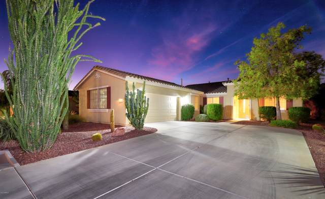 42830 W Whimsical Drive, Maricopa, AZ 85138 (MLS #5986008) :: Revelation Real Estate