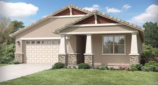 12817 N 145TH Drive, Surprise, AZ 85379 (MLS #5986147) :: Sheli Stoddart Team | West USA Realty