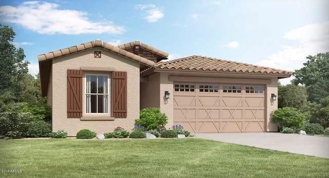 14601 W Columbine Drive, Surprise, AZ 85379 (MLS #5986153) :: Sheli Stoddart Team | West USA Realty