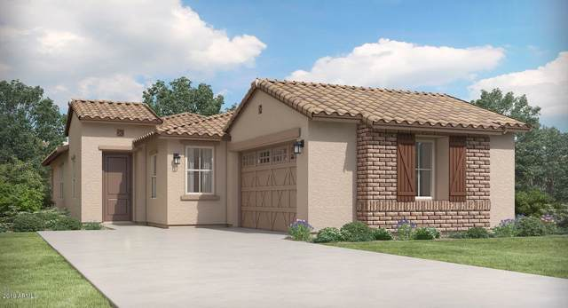 14617 W Columbine Drive, Surprise, AZ 85379 (MLS #5986165) :: Revelation Real Estate