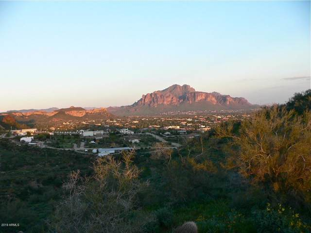 493 W Mcdowell Boulevard, Apache Junction, AZ 85120 (MLS #5986258) :: Long Realty West Valley