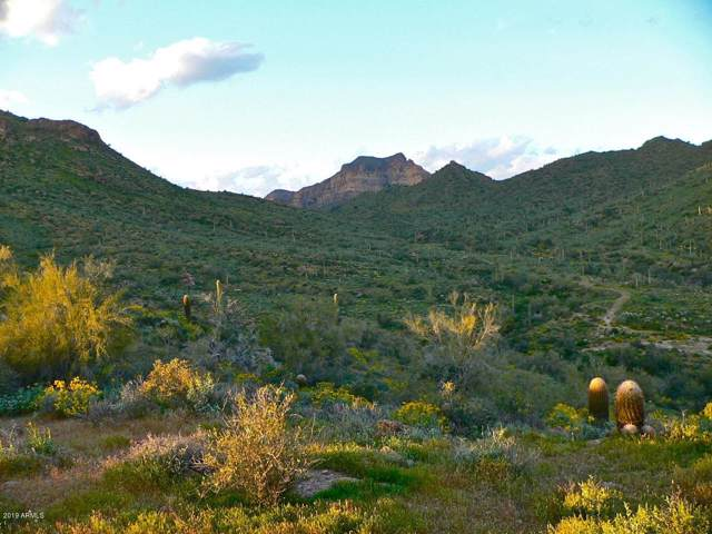 XXX W Mcdowell Boulevard, Apache Junction, AZ 85120 (MLS #5986260) :: Lux Home Group at  Keller Williams Realty Phoenix