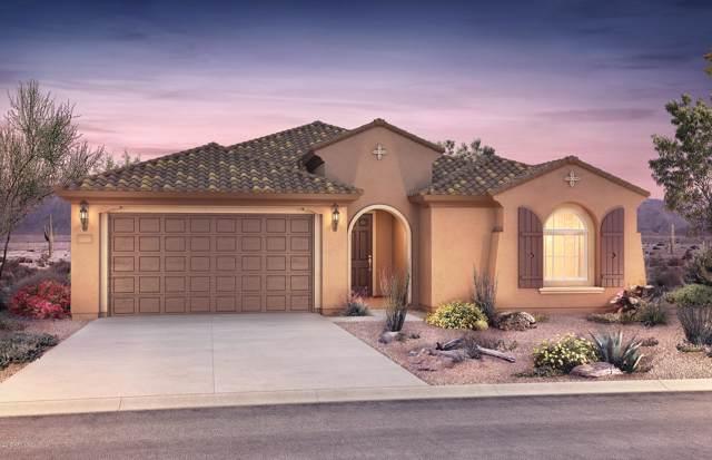 5352 S Verde, Mesa, AZ 85212 (MLS #5986280) :: Lucido Agency