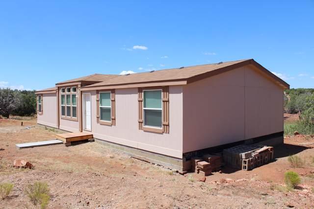 3666 Ranch Drive, Ash Fork, AZ 86320 (MLS #5986362) :: Arizona 1 Real Estate Team