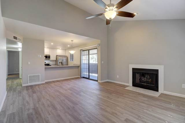 533 W Guadalupe Road #2025, Mesa, AZ 85210 (MLS #5986597) :: The Kenny Klaus Team