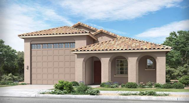 24196 N 168TH Lane, Surprise, AZ 85387 (MLS #5986623) :: Sheli Stoddart Team | West USA Realty