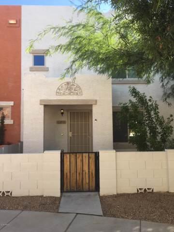 16270 N Desert Sage Street, Surprise, AZ 85378 (MLS #5986665) :: Nate Martinez Team