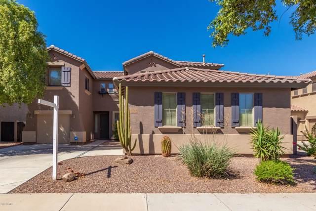 12114 N 146TH Avenue, Surprise, AZ 85379 (MLS #5986712) :: Revelation Real Estate